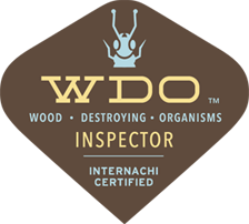wood destroying organisms inspector